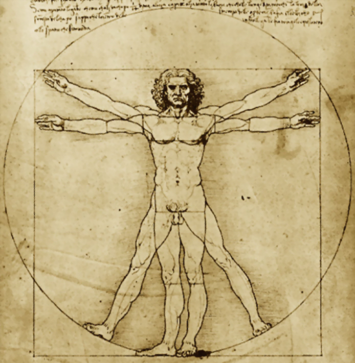 Leonardo-da-Vinci-Vitruvian-Man%2002.png